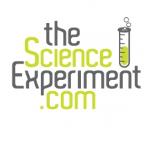 TheScienceExperiment.com Logo