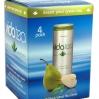 Vidatea 4-Pack Packaging - Desert Pear