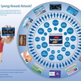 Synergy Program Infographic