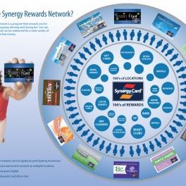 Synergy Program Infographic
