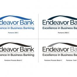 EndeavorBrandingGuide12